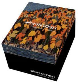 Thomson Autumn Foliage Grande Mug - McIntosh Shop - 2