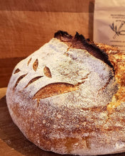 FRONTIERSMAN SOURDOUGH