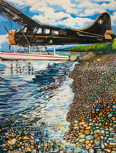 Dehavilland Beaver on Alaska Beach