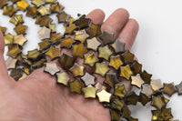 "2 Strands Amber Mother of Pearl Star Shell Beads - Around 14mm - 2 Full Strand 15.5"" - Wholesale Bulk Pricing"