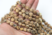 "Picture Jasper Beads Matte Beads - Heart Shaped 10mm - 1 strand ~15.5"" - Special Exclusive Item"