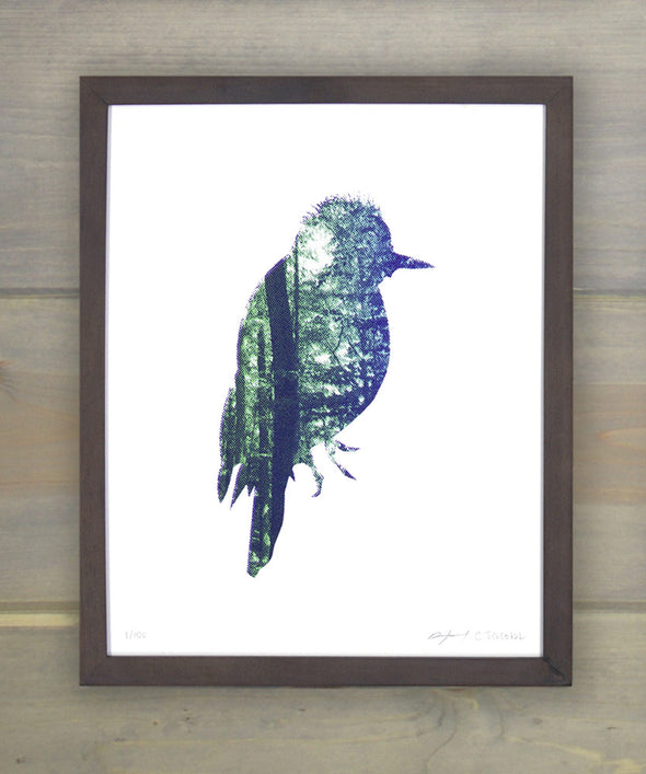 Blackback Woodpecker Screen Print