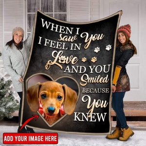 Pemola - Wiener dog Fleece Blanket, Dachshund Puppies Christmas decorations blanket