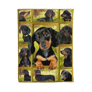 Pemola - Dachshund Dog Fleece Blanket, weiner dog blanket