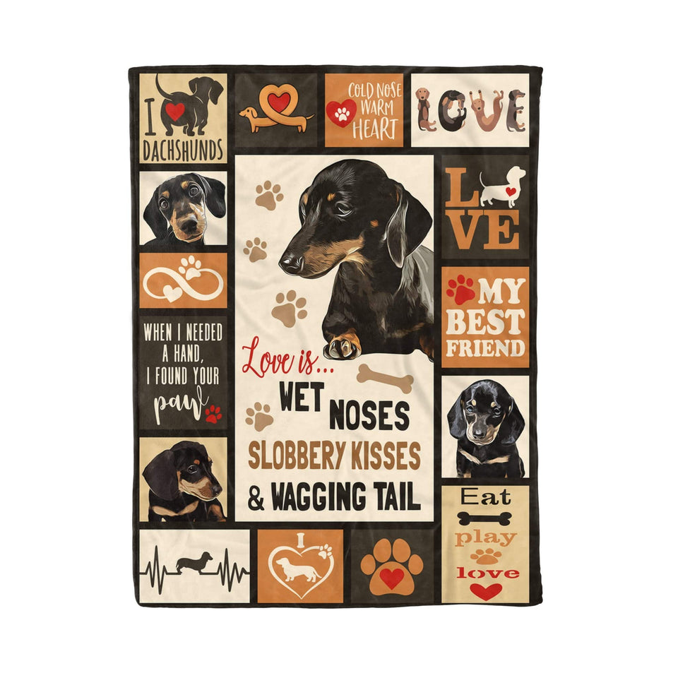 Pemola - Dachshund puppies dog fleece blankets, weiner dog puppies, doxin, gifts for dachshund lovers