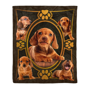 Pemola - Red Dachshund Dog, Dachshund Puppy Blanket, 3D Dachshund, Fleece Blanket