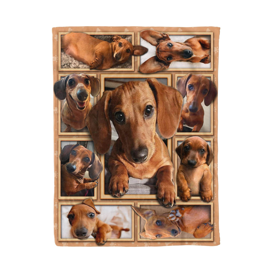 Pemola - Dachshund puppy dog Red Fleece Blanket