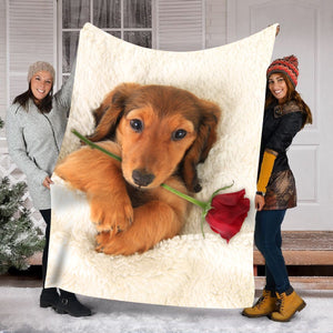 Pemola - Dachshund Blankets, dachshund dog, Doxin Fleece Blankets, gifts for dog lovers, valentines day gifts
