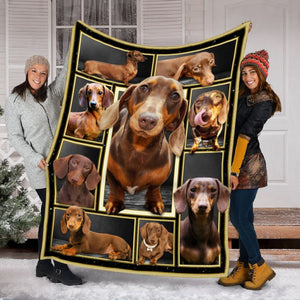 Pemola - Dachshund Dogs Chocolate & Tan Fleece Blanket