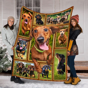 Pemola - Dachshund Dog 3D Funny Fleece Blanket