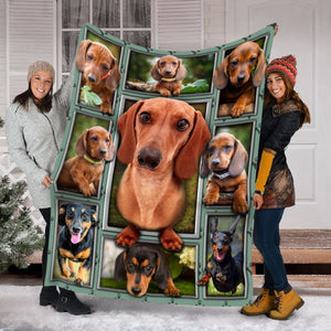 Pemola - Gift For Dog Lovers, Funny Dog Blanket, Cute Dachshund Dog Fleece Blanket
