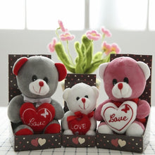 Load image into Gallery viewer, Teddy Bear Valentine's Gift