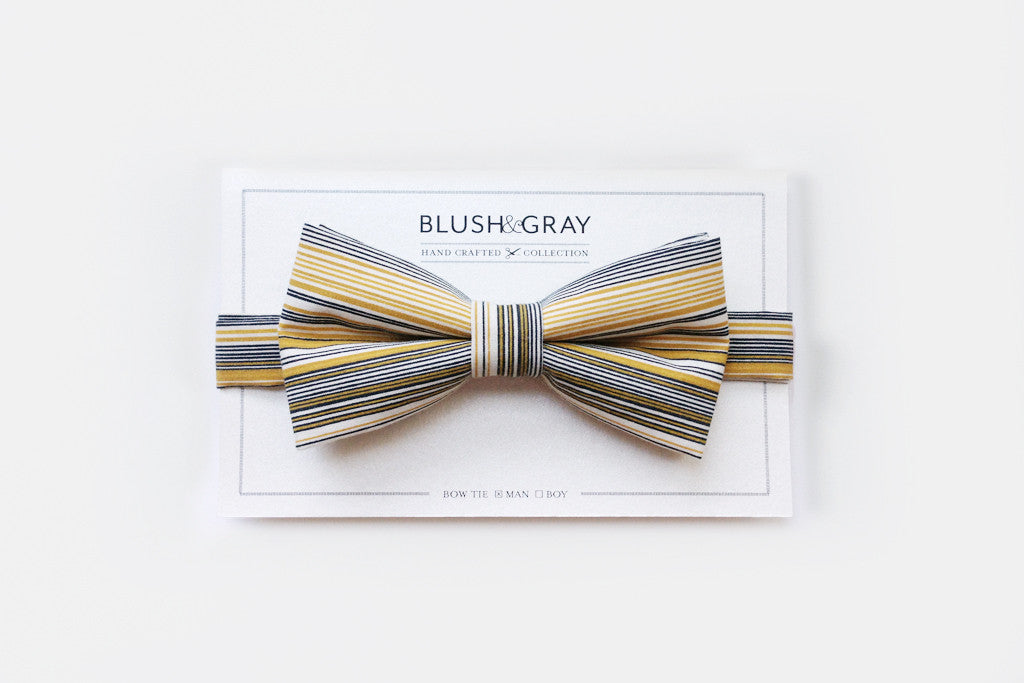 Multi Stripe Bow Tie