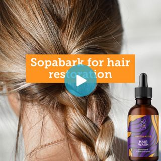 Learn how Soapbark is restorative for the hair