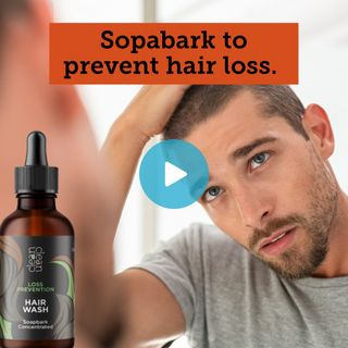 Soapbark is a miracle against hair loss in men