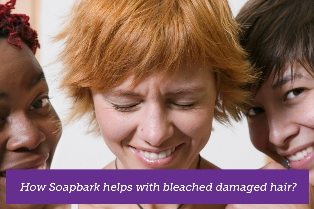 soapbark treatment for bleached and damaged hair cleanclean