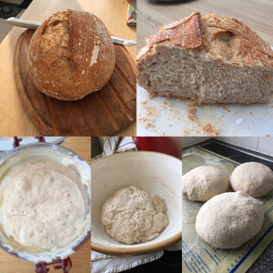 Organic MEDIUM loaf selection - Sole Bay Sourdough