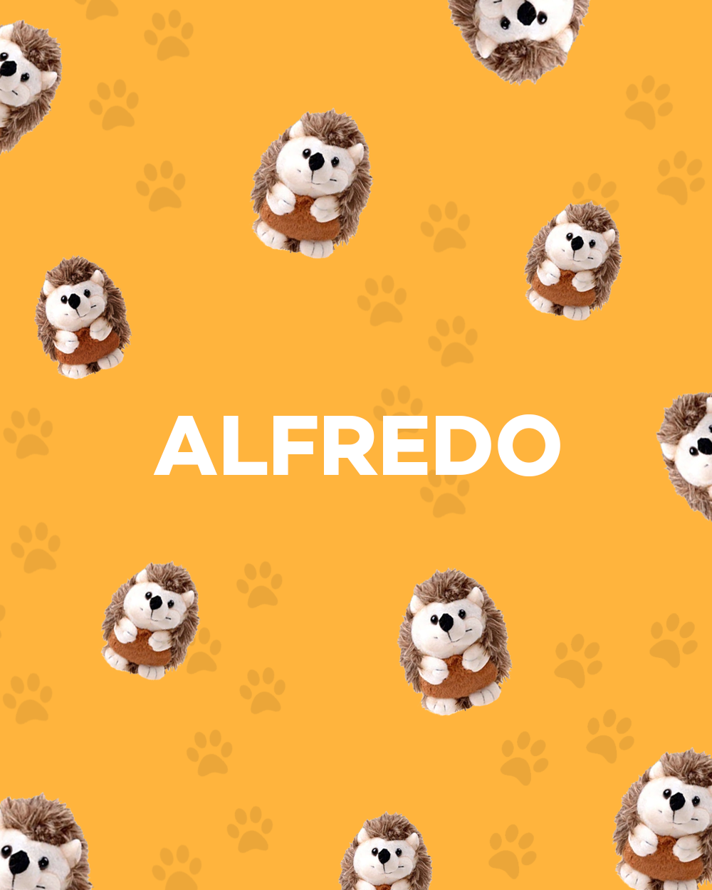 ALFREDO COLLECTION