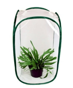 Medium Butterfly Pop up cage