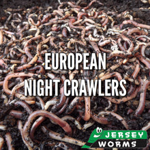 Load image into Gallery viewer, Earth Worms for sale in NJ - Jersey Worms