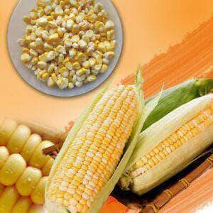PMART.PK-PAKISTAN MART- ONLINE GROCERY STORE packed Corn Seed 200g