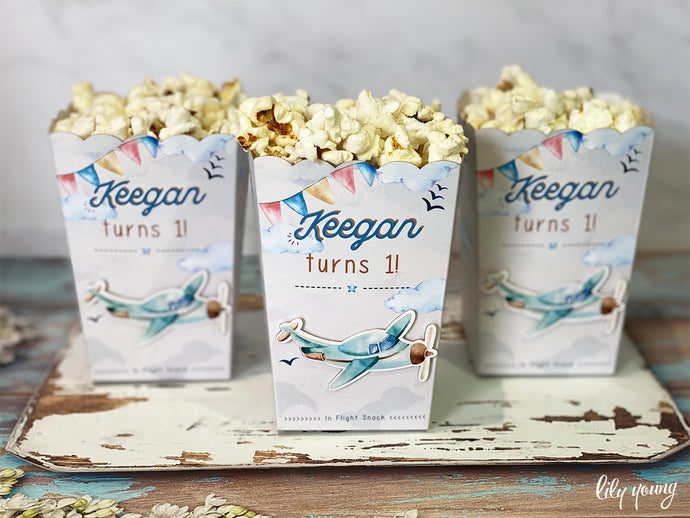 Vintage Plane Popcorn Box - Pack of 12