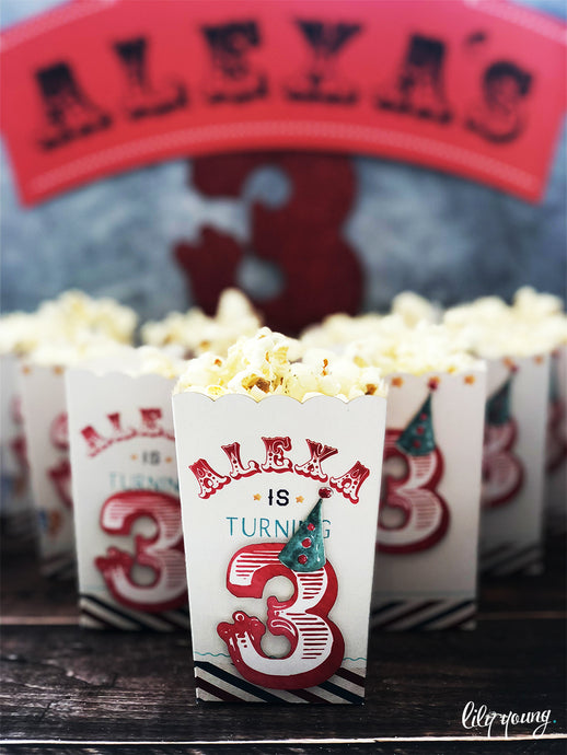 Circus Popcorn Box - Pack of 12
