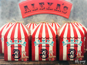 Circus Party Boxes - Pack of 12