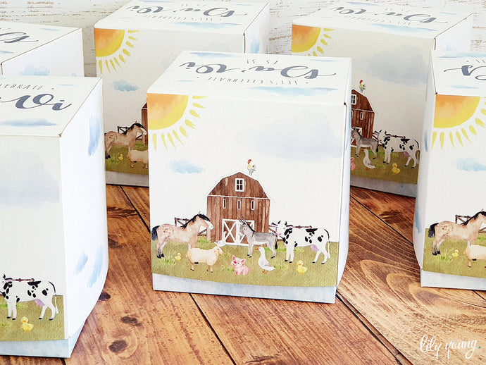 Farm Party Boxes - Pack of 12
