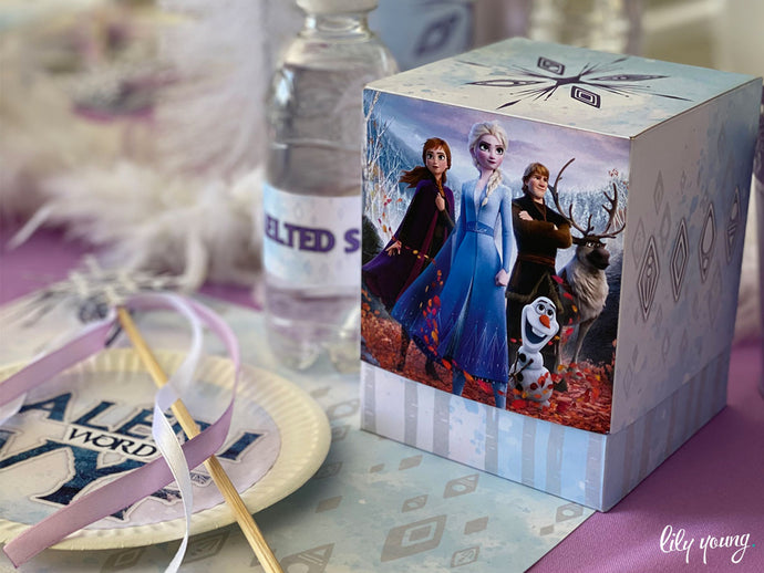 Frozen Party Boxes - Pack of 12