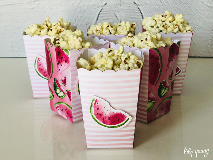 One in a Melon Popcorn Box - Pack of 12