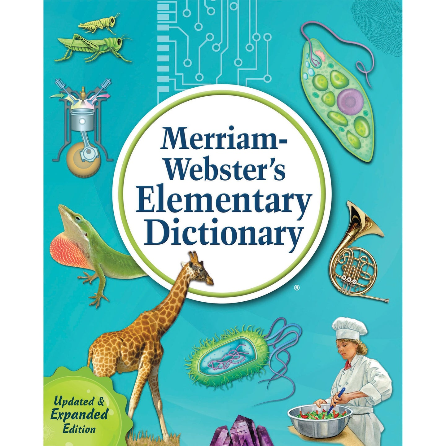 Merriam-Webster's Elementary Dictionary (New) - Little Green Schoolhouse Books