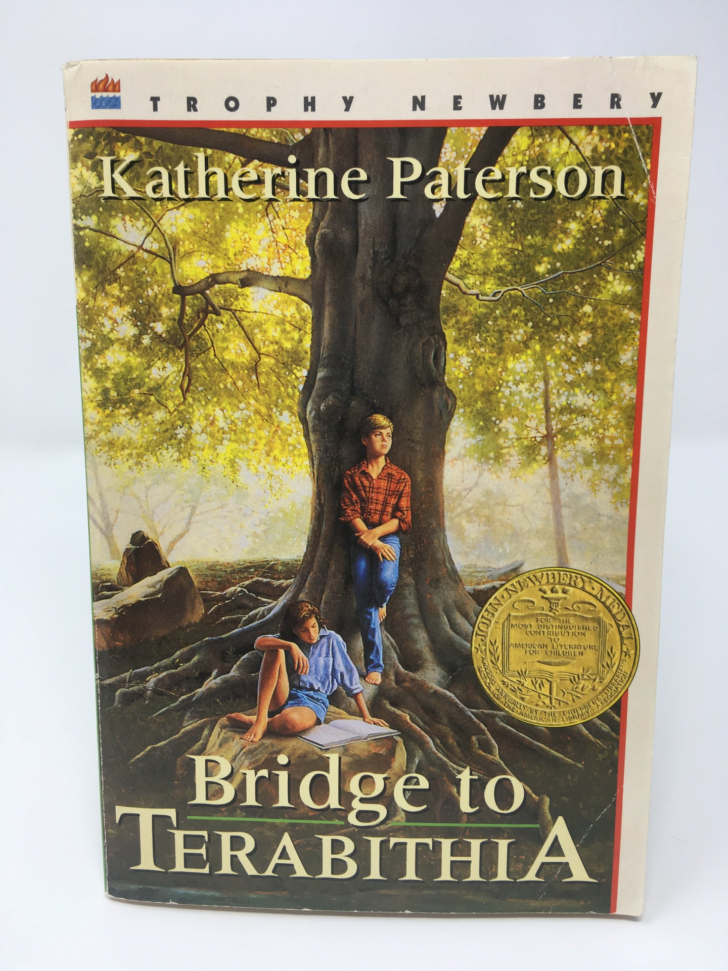 Bridge to Terabithia by Katherine Paterson - Used-Worn/Acceptable - Little Green Schoolhouse Books