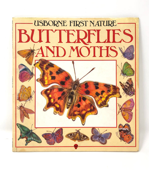 Butterflies and Moths-Usborne First Nature (Used-Worn/Acceptable) - Little Green Schoolhouse Books