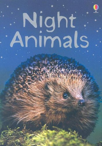 Night Animals - Usborne Beginners (Used) - Little Green Schoolhouse Books