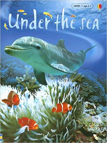 Under the Sea- Usborne Beginners (used) - Little Green Schoolhouse Books