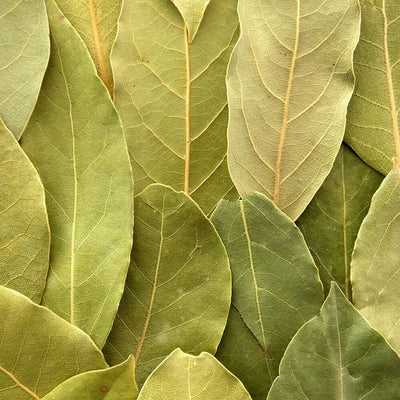 Bay Leaf for Taste and Aroma