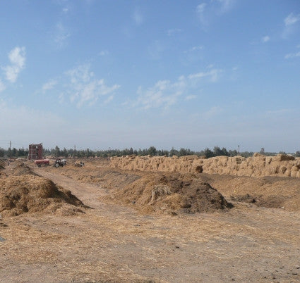 Composting Facility in Egypt