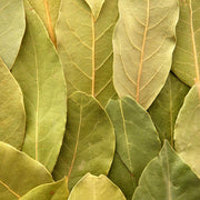 High Quality Organics Express Bay Leaf Whole