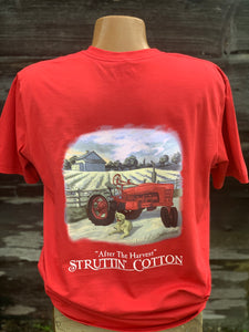 Struttin' Cotton-After the Harvest