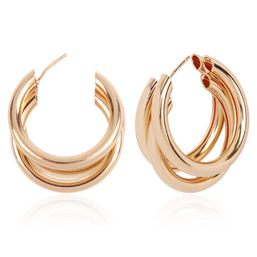sunita earrings