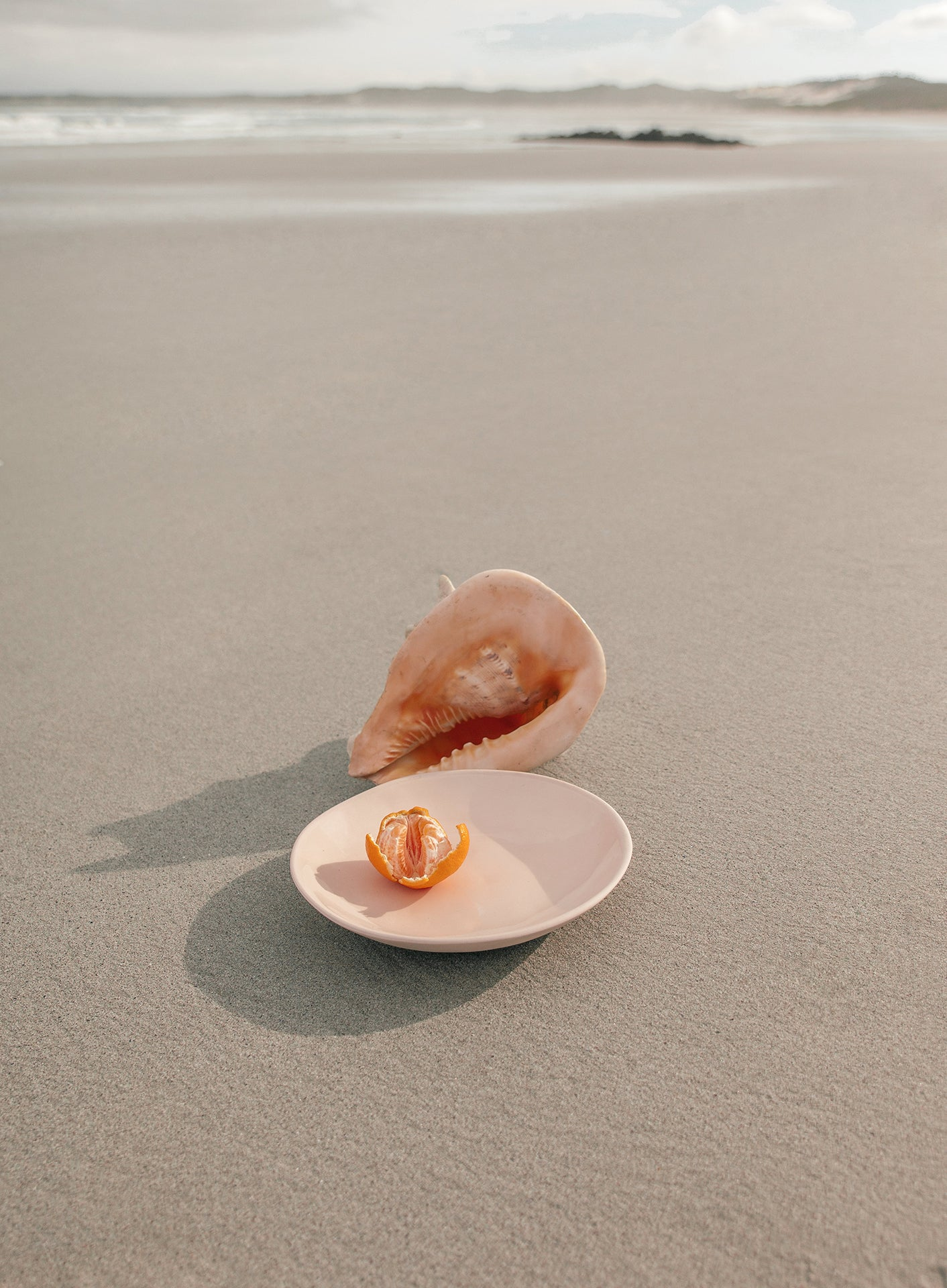 Theodore Afrika - Still Symmetry 08 - Print of a pink and orange shell alongside a place containing a naartjie.