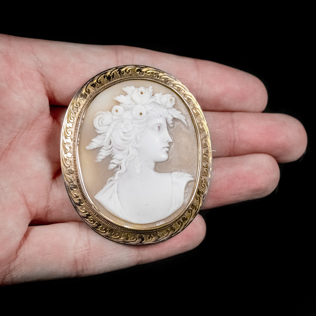 ANTIQUE VICTORIAN BULLMOUTH SHELL CAMEO BROOCH 9CT GOLD FRAME CIRCA 1900