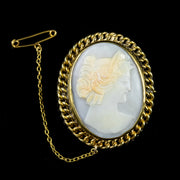 ANTIQUE VICTORIAN CAMEO BROOCH 9CT GOLD GILT CIRCA 1860