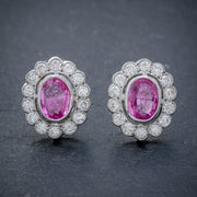 PINK SAPPHIRE DIAMOND CLUSTER STUD EARRINGS 18CT WHITE GOLD 2CT OF SAPPHIRE