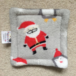 Christmas 2018 Bottle Pad - Santa and Penguines with Grey Fleece