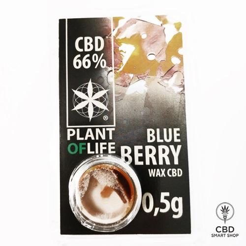 CBD Dišavne esence - Plant of Life 66% - CBD Smart Shop