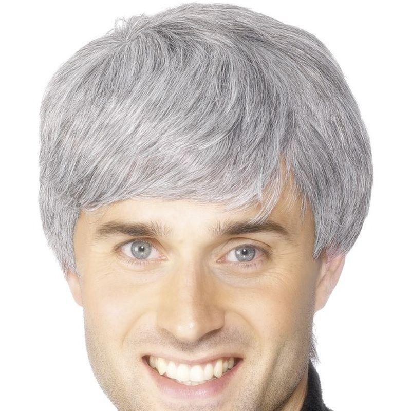Corporate Wig Adult Grey - Mens Wigs Mad Fancy Dress