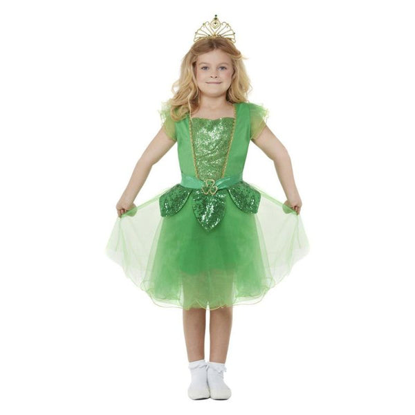 Deluxe St Patrick's Day Glitter Fairy Costume