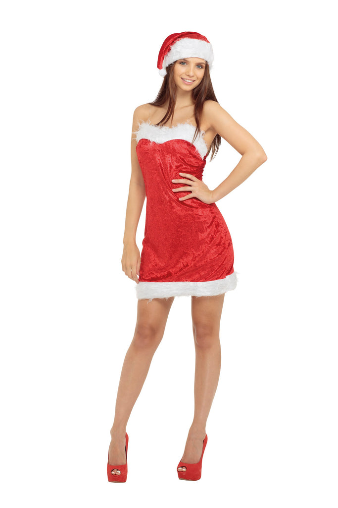 Miss Santa Sexy Small Adult Fancy Dress Costume Womens Small Red White